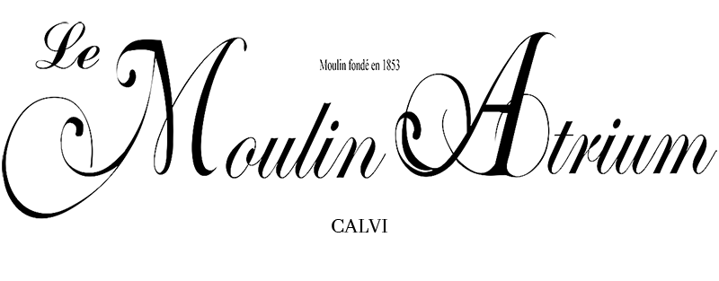 LE MOULIN ATRIUM4
